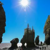 Bei den Hopewell Rocks im Fundy Bay N.P.