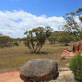Felsformationen im Gawler Ranges Nationalpark